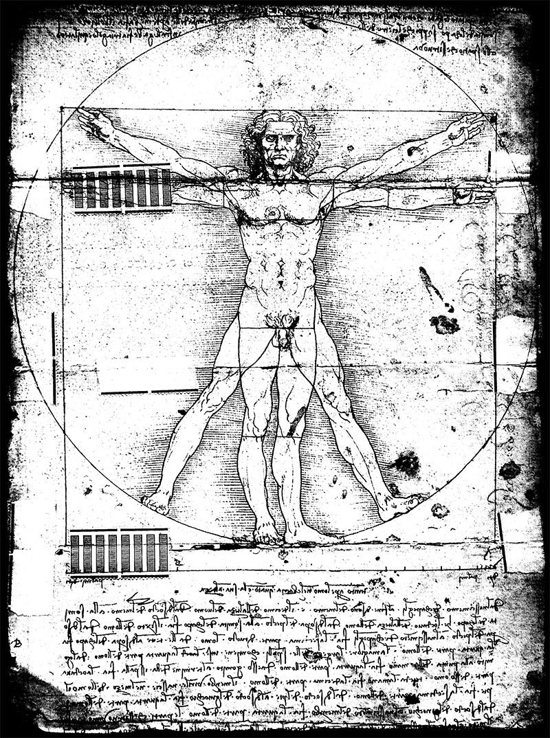 """""""Der vitruvianische Mensch"""" von Leonardo da Vinci"""